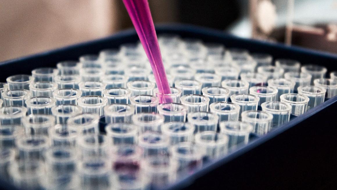 chemia - Laboratorium chemiczne dla maturzystów